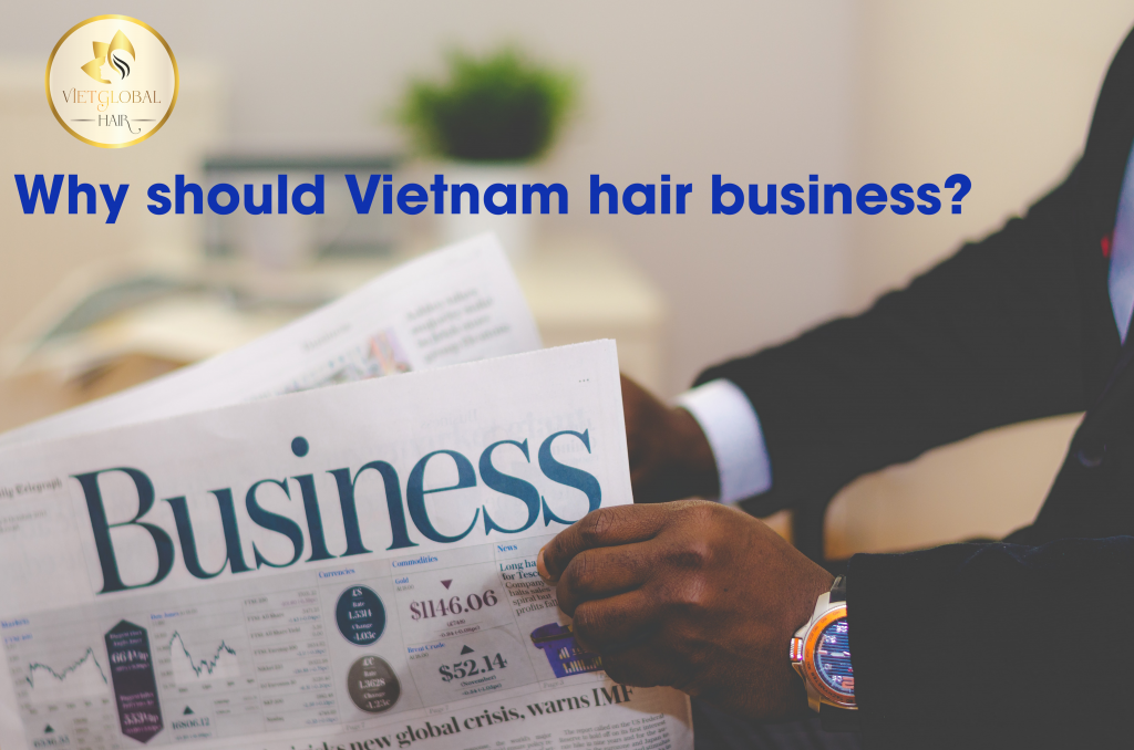 why-should-vietnamhair-business